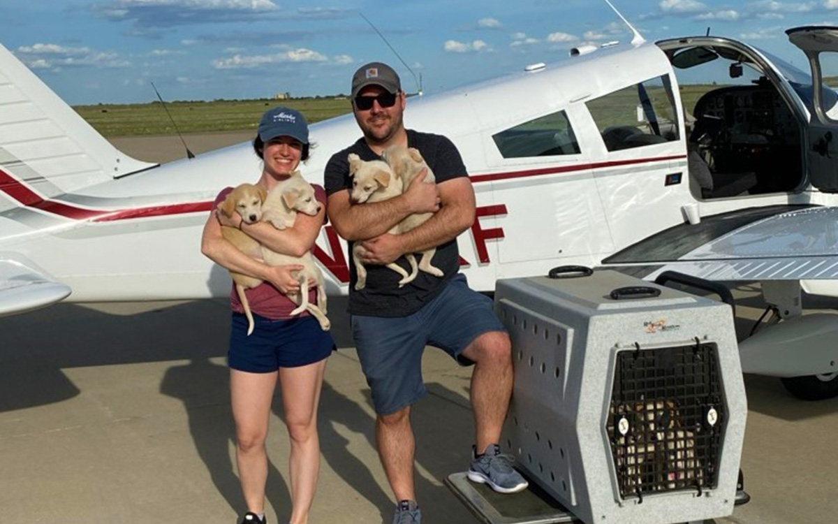 Strengthening our Communities: Pilots for Paws